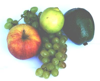 chronische darmerkrankungen ernährung